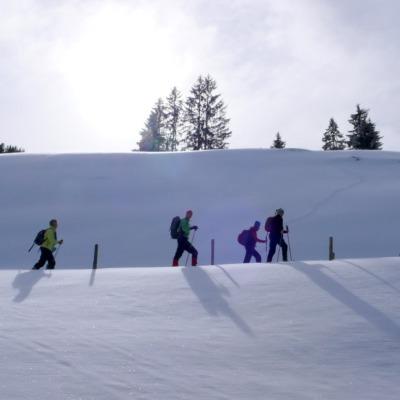 Schneeschuhgruppe unterwegs