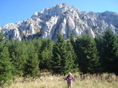 Piatra-Craiului-National-Park (3)