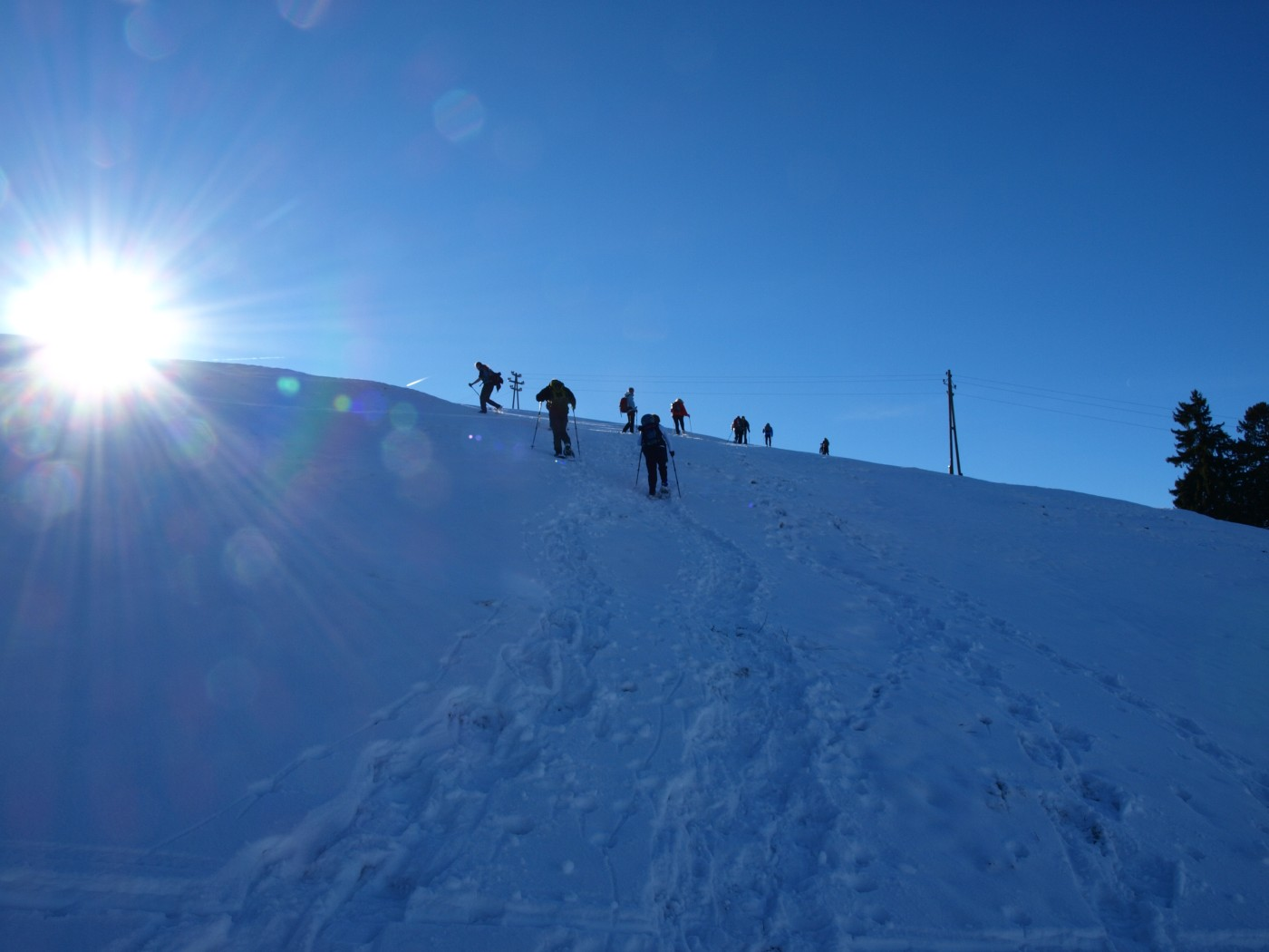 geführte schneeschuhwanderungen allgäu