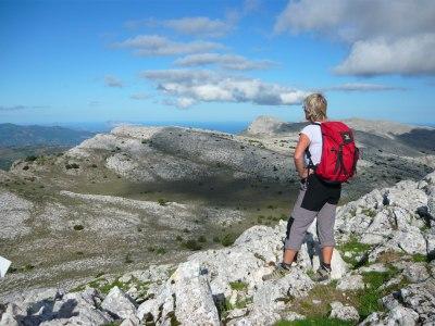 Monte Albo (1)