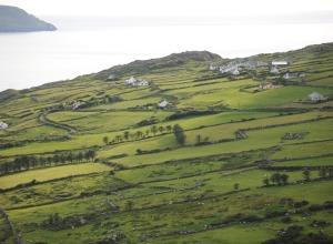 Farmland im Südwesten Irlands