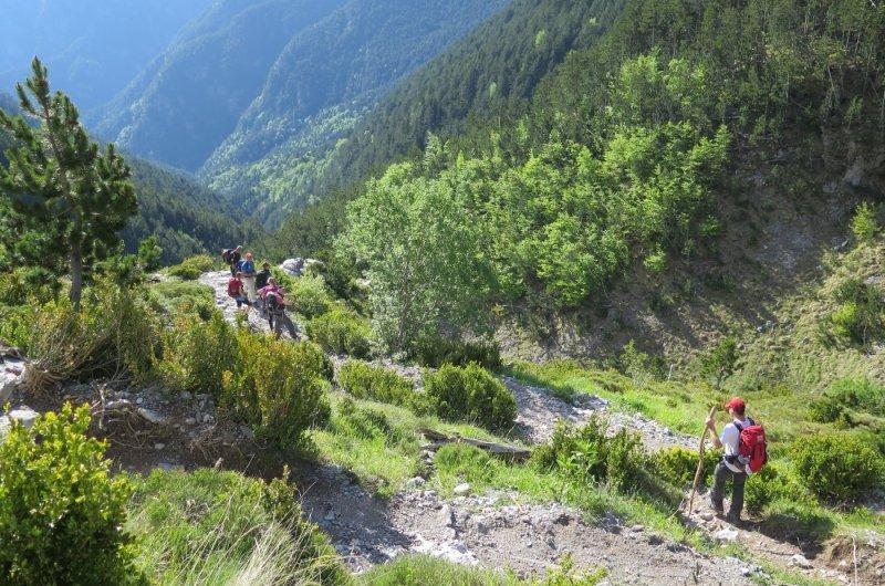 Abstieg - steiler Weg