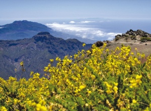 Weitblick über La Palma
