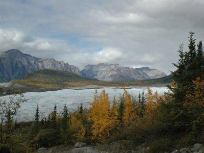 Gletscher mit Tundrafärbung