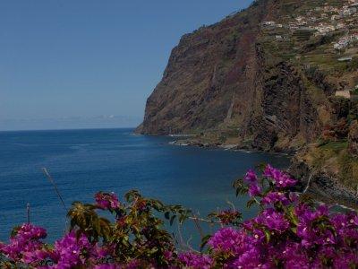 Camara de Lobos © Turismo Madeira