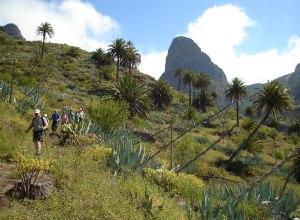 La Gomera Inseldurchquerung