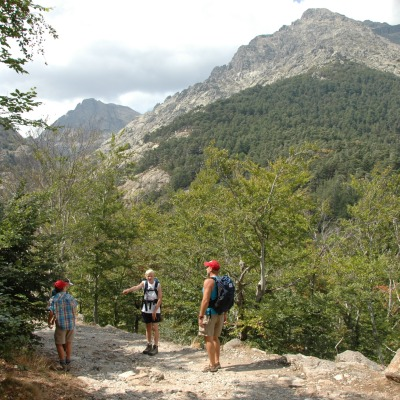 Korsika - Wandern im Zentrum