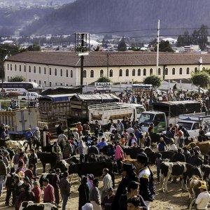 Otavalo 3