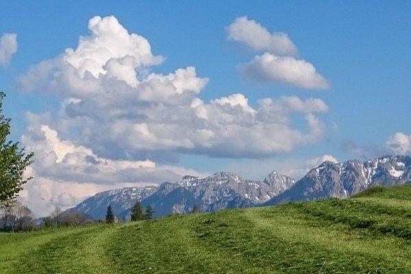 Wiesen und Berge