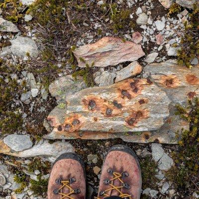 Wandern in den Bugaboo Mountains
