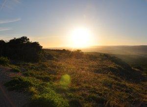 Sonnenaufgang über der Steppe