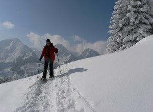Schneeschuhgeher vor Bergkulisse