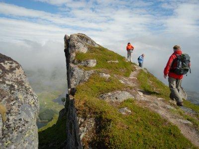 Felsformation auf den Lofoten