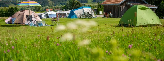 CampingWaldesruh Zeltplatz