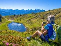 Alpenrosen Wertacher Hörnle