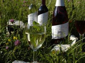 Sekt&Wein Allgäuer Gebirgskellerei
