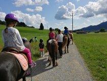Ponyschatzsuche mit Simone