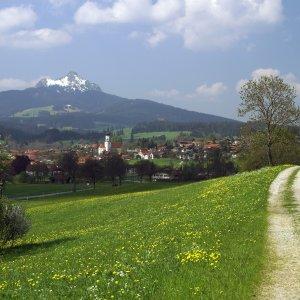 Wertach mit Grünten und Frühlingswiese