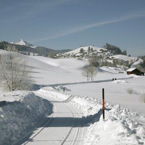 Bichel im Winter