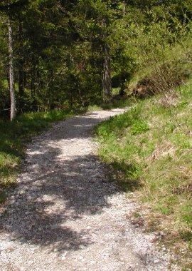 Sebaldweg