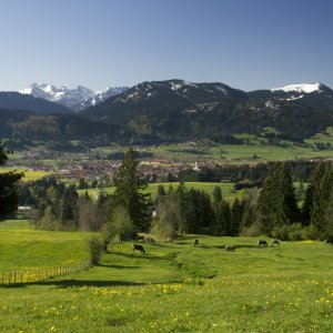 Wertach Panorama Frühling