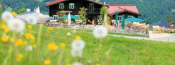 Alpseebergwelt