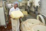 Käse Herstellung
