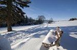 Winterlandschaft mit Blick auf Grünten