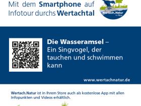 Projekt Wertach.Natur