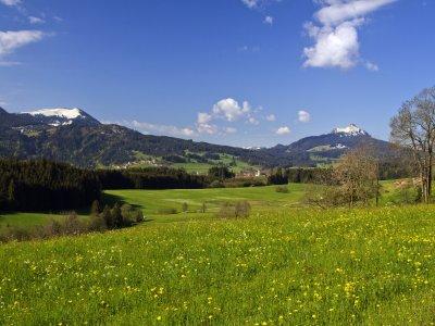 Blick auf Wertach und Grünten im Frühling