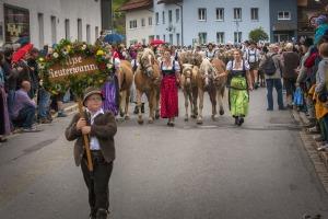 Viehscheid 2015