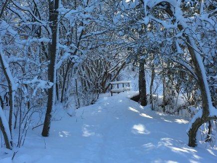 Naturerlebnispfad Winter