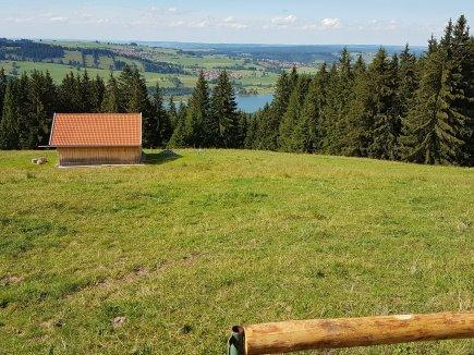 Blick von der Buronhütte auf den Grüntensee