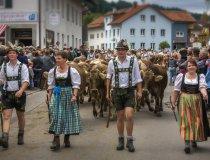 Wertacher Viehscheid Alpe Vordere Kölle