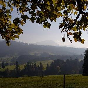 Herbst mit Blick auf Wertacher Hörnle