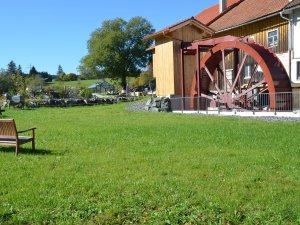 Deutscher Mühlentag Tag der offenen Tür in der Oberen Mühle