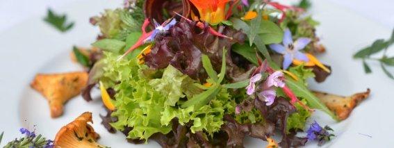 Genussregion-westallgaeu-regionale-spezialitaeten-pfifferlinge-auf-salat