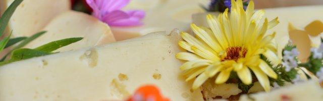 Westallgäu Kräuterküche und Käse
