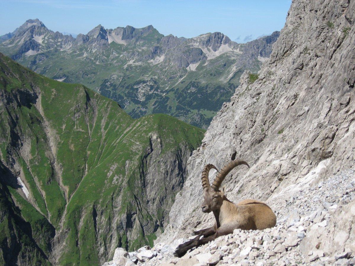 Klettersteig Oberstdorf : Rappenseetal and mindelheimer klettersteig beyondshatteredmoments