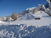 Halde mit str. Winter