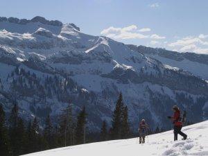 Schneeschuhwandern im Rohrmoos