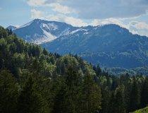 Grüne Bergwälder