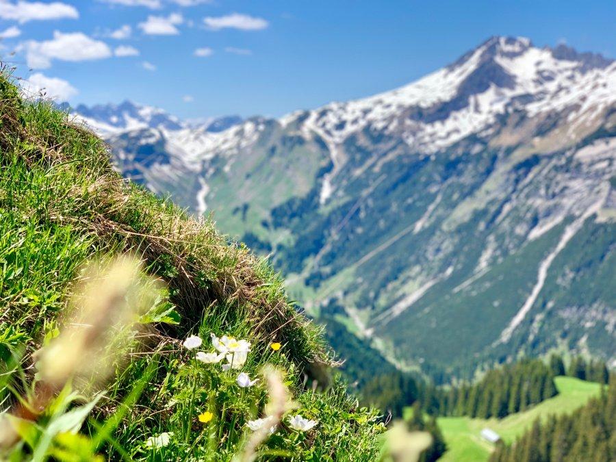 Hochalpine Bergwelt in Oberstdorf