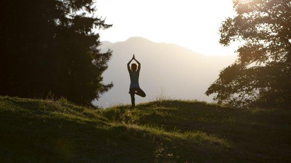 Yoga und Waldbaden