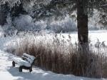Winterlandschaft am Karatsbichel